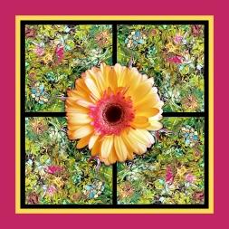 Spring Daisy 1800x1800 by HMV Marek
